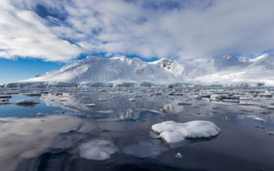 Antarctic Adventure Day 9 – Afternoon